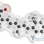Novedades en dermatología: Isotretinoina y depresión.